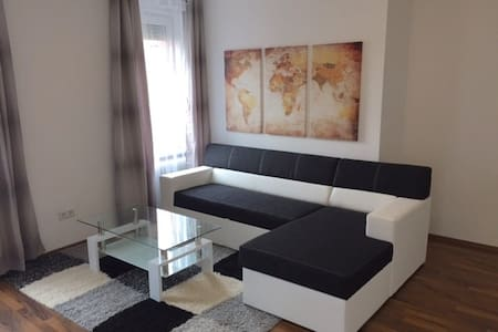 Furnished modern apartment (TLA) in Kaiserslautern - Pis