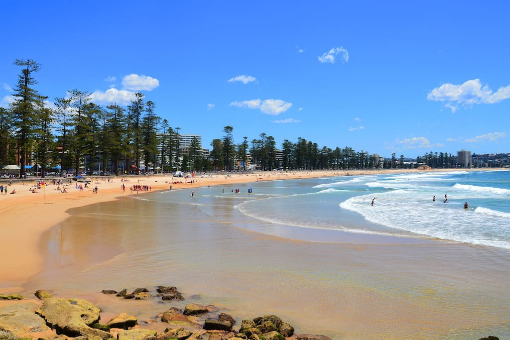 Manly on the Beach