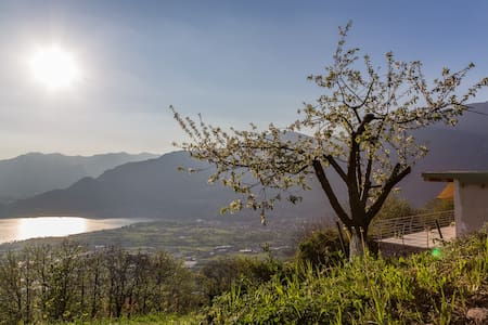ALVEARE SUL LAGO  b&b - Bed & Breakfast
