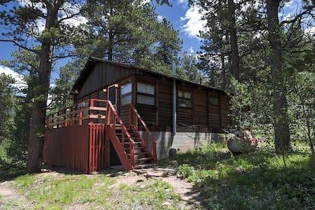 Secluded 2BR Allenspark Cabin - Stuga