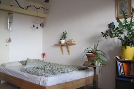 Großes gemütliches Zimmer mit Balkon in Stadtnähe - Friburg - Apartament