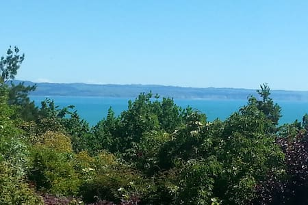 Secluded sea view atop Napier Hill.