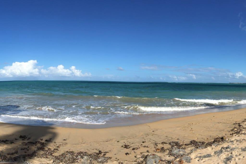 Beautiful beaches just steps away!