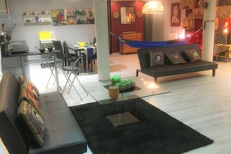 Grand Studio 1 á 6 pers au coeur de la ville - Lourdes - Loft