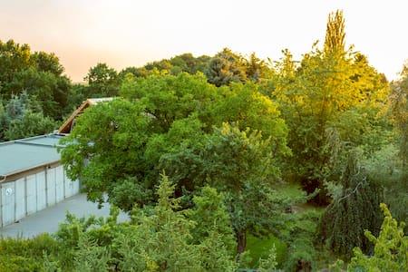 Zimmer mit Balkon, Garten und Pool - Forst (Lausitz) - Bed & Breakfast