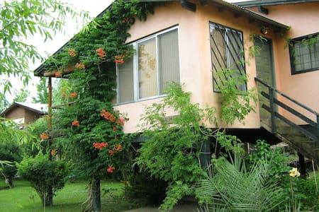 Room in the delta islands of Paraná river, Tigre. - Tigre