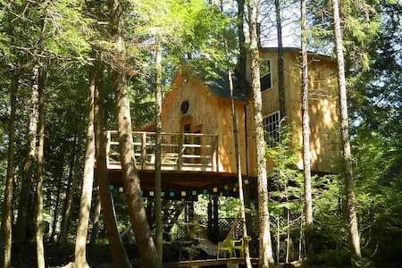 Lily's Brookside Treehouse - Treehouse