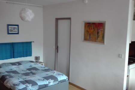 studio meublé pied des cures - Amélie-les-Bains-Palalda - Apartmen