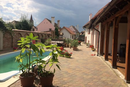 Nice spacious house with swimming pool - Cristian - Dom