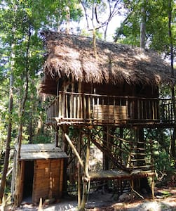 Rainforest Tree House - Kulai - Hus