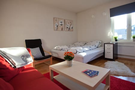 Great Room with Breakfast close to Central Station - Oslo - Apartmen