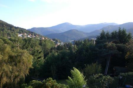 Chalet de Grand Standing avec Piscine,Spa et Sauna - Saint-Amarin - Dağ Evi