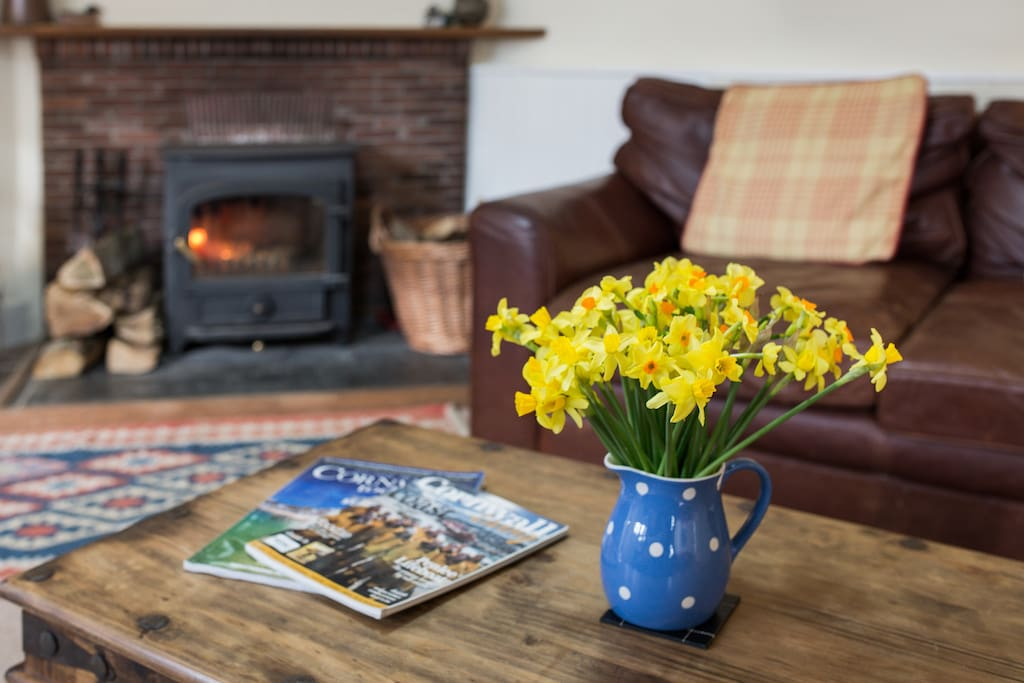 Albion Cottage cosy living room and log fire