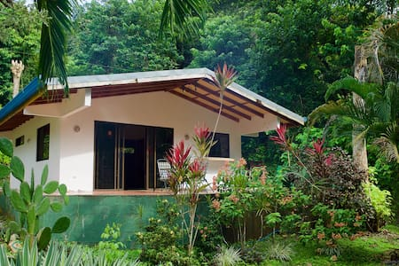 Two Bedroom Jungle Bungalow and pool . - Cóbano - Bungalow