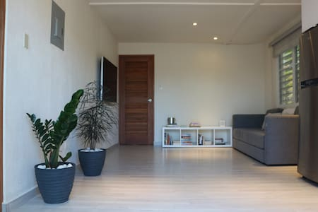 Modern 1 Bed/1 Bath in Dorado steps from the beach - Apartemen