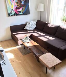 Lys lejlighed i hjertet af Odense - Odense - Apartment