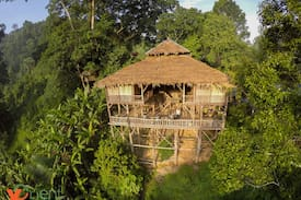 Picture of Tree House Hideaway