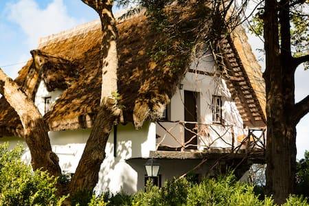 Casa de colmo  típica de Santana - Santana