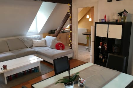 Bed & breakfast & bike in Strasbourg city center - Strasbourg - Apartment