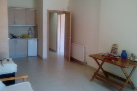 Ground floor apartment 120 sq.m. near the airport - Dom