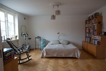 Spacious apartment in central Lund - Lund - Appartement