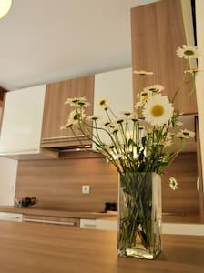 Apartment Kamnik - Apartamento