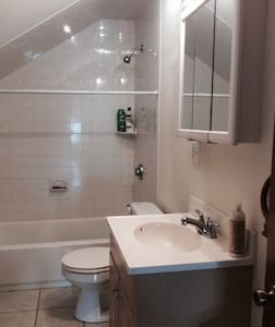 Spacious room in Federal Hill - Providence - Apartment