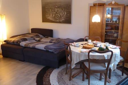 Gemütliche (komplette) Wohnung im Stadtzentrum!! - Neustadt (Hessen) - Apartment