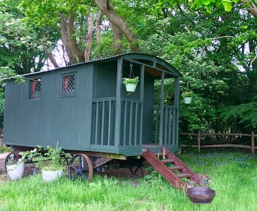 Shepherds hut, New Forest - Pondok