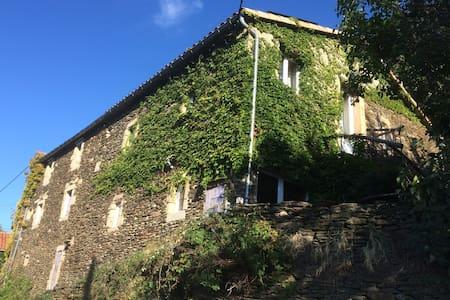 Mas cévenol - House