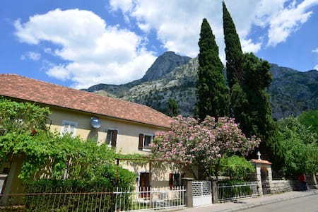 One bedroom apartment/Yellow - HOUSE 561 - Kotor - Lejlighed