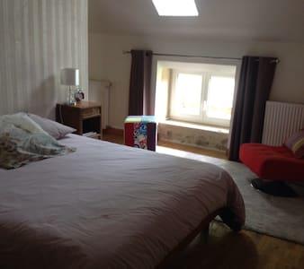 Une grande chambre dans agréable maison - La Capelle-Bleys - Hus