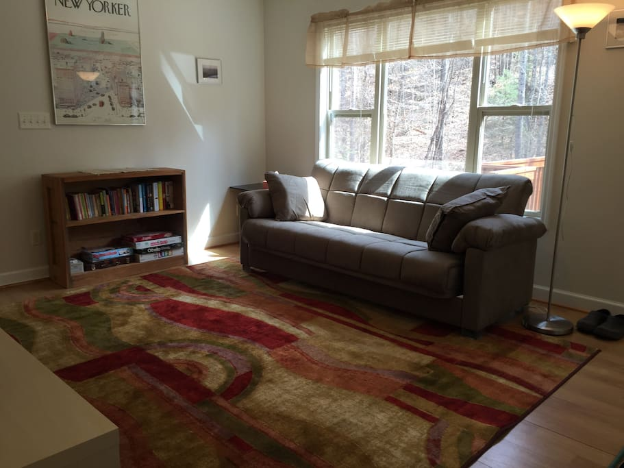 Bright scenic Living Room.  Sofa converts to a full size bed