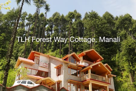 TLH Forest Way: Comfort Room - UF - Manali - Bed & Breakfast
