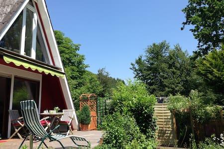 Sonniges Nur-Dach-Ferienhaus Pfalz - Gossersweiler-Stein  - Maison