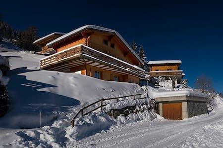 Chalet El Paradiso, skiing, hiking & nature lovers - Martigny