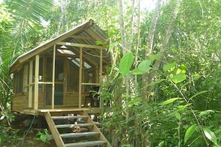 Moonracer Farm:  Cohune Camping Casita Room 4 - Santa Elena - Cabane