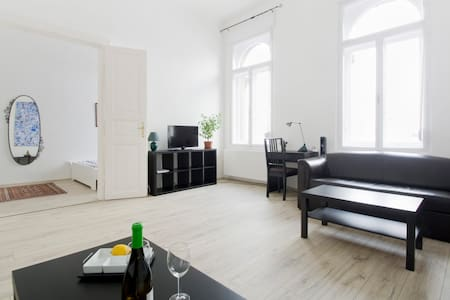 Spacious flat in downtown Budapest - Budapest