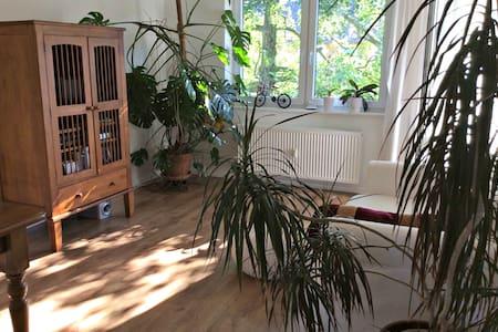 Geräumiges Zimmer mit eigenem Balkon am Dornbusch - Apartment
