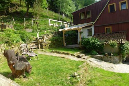 Ferienwohnung sächsische Schweiz - Apartamento