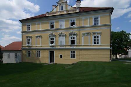Private rooms in old castle - Sedlec-Prčice