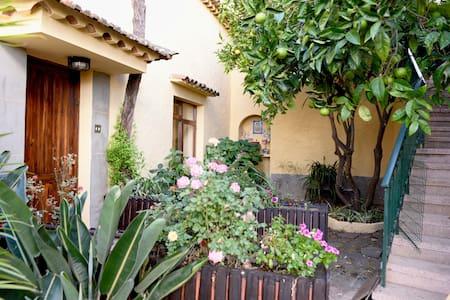 Casa rural en Utiaca - Magníficas vistas - Vega de San Mateo - Hus