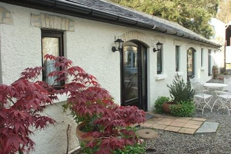 Charming coach house cottage - Nenagh - House