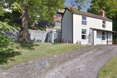 Swansea Vale Comfort - House