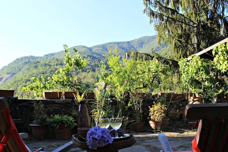 Il Giardino di Lidia - B&B - One double room - Casola In Lunigiana - Bed & Breakfast