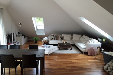 Charming 2,5-Room Rooftop Apartment