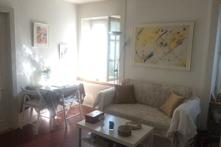 Lovely and cosy one bedroom flat in Old Carouge - Apartmen