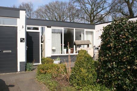 Bungalow  met binnentuin - Haus