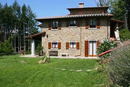 Podere Le Macchie, sleeps 10 guests - Subbiano - Villa