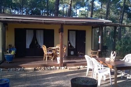 Chalet confortable Centre naturiste Euronat - Chalet